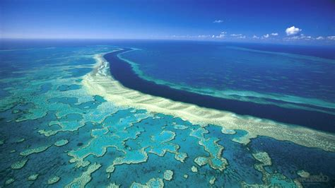 Great Barrier Reef Wallpapers