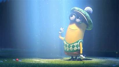 Despicable Wallpapers Minion Backgrounds Minions 1080 Awesome