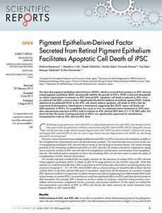 Pigment Epithelium-Derived Factor... (PDF Download Available)