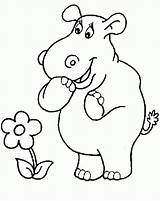 Hippo Coloring Animals Printable Birthday Coloring2print sketch template