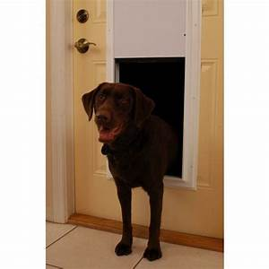 Pin by patricia brummer on hunde und die katze pinterest for Automatic dog doors for walls