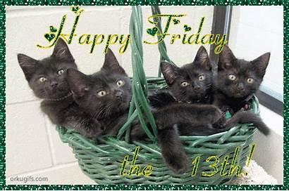 13th Friday Happy Cat Freitag Meme Thread