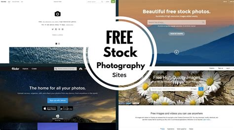 15 Best Free And Premium Stock Photography Sites