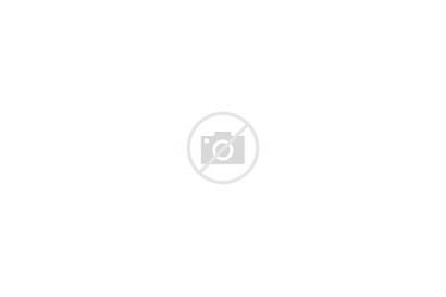 Cards Blank Flash Card Stack Revision Fanned