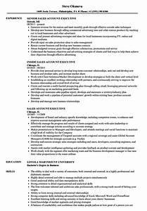 Sales account executive resume sample perfect resume format for Account executive resume