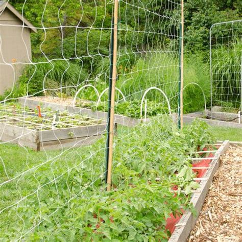 garden trellis netting trellis netting crop supports farmer seeds