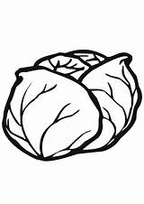 Cabbage Coloring Colorir Repolho Patch Normal Vegetable Desenhos Imprimir Indiaparenting Contactless Same Delivery Choose Drive Colorironline Desenho sketch template