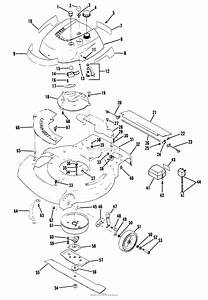 Diagram  1949 F100 Engine Diagram Full Version Hd Quality