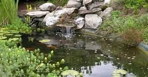 un bassin de jardin avec cascade With photo de bassin de jardin