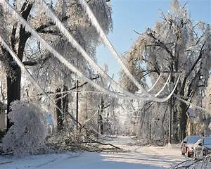 More Photos Of Ice Storm Damage