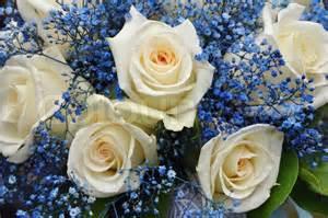 blaue blumen hochzeit hochzeit bouquet mit weißen und blauen blumen stock foto colourbox