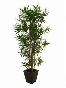 Bambus Pflege Zimmerpflanze : bambus multistamm 210cm k nstliche pflanzen kunstpalmen ~ Michelbontemps.com Haus und Dekorationen
