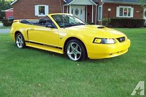 2004 FORD MUSTANG GT CONVERTIBLE 40TH ANNIVERSARY YELLOW for Sale in Liberty Township, Ohio ...