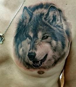 Tatouage Loup Celtique : quelle est la signification des tatouages de loups ~ Farleysfitness.com Idées de Décoration