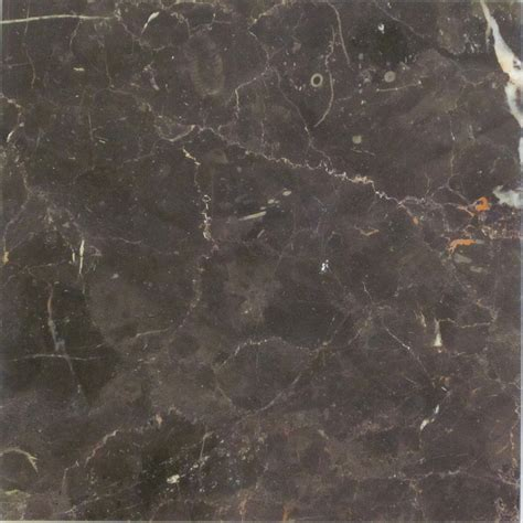 st laurent marble tile polished oriental saint laurent terra tile and marble