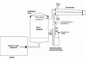Essential Oil Steam Distillation Diagram