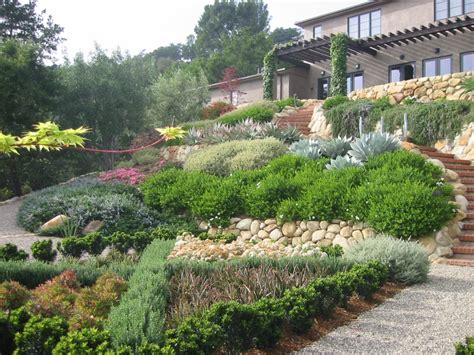 slope gardening looking up tiered slope garden landscaping water wise