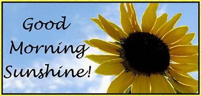 Glitter Graphics Morning Sunshine Text Lol Greetings