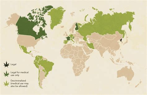 the world s most marijuana friendly countries infographic