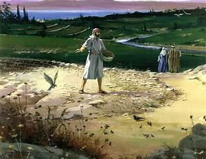 Parable, Sower, U22c6, Bible, Symbols