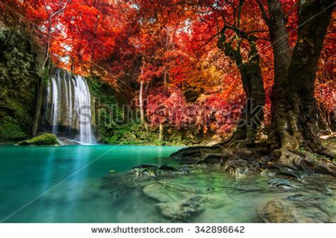waterfall stock images royalty  images vectors