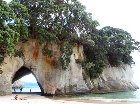 Gallery  New Zealand  Cathedral Cove