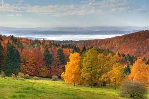Bilder Vom Wald : th ringer wald ferienstrassen info ~ Yasmunasinghe.com Haus und Dekorationen