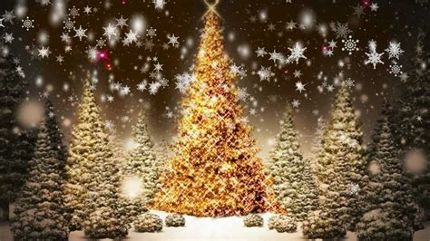 snowflakes falling christmas trees motion graphic video