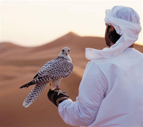 Falconry, Abu Dhabi | Falconry in Abu Dhabi | Visit Abu ...
