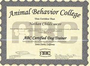 trainer good dog training services With dog training certification