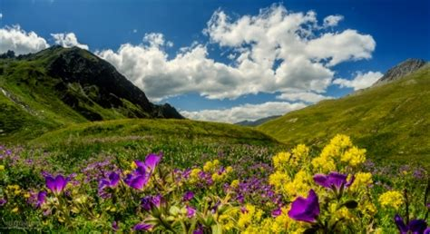 spring mountain meadow mountains nature background