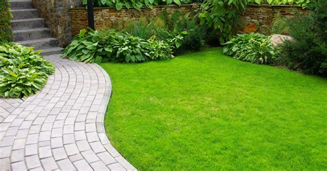 lawn to garden hoosier gardener there s a science to maintaining a lawn