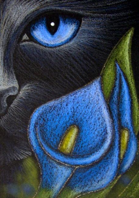 black cat katze blue lily flowers  cyra  cancel
