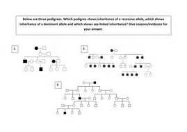 A2 Pedigree Diagram Analysis Activity Genetics By Scienefun  Teaching Resources Tes