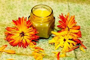 Handcreme Selber Machen Rezept : ringelblumensalbe rezept zum selber machen selbst herstellen ~ Yasmunasinghe.com Haus und Dekorationen