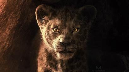 Lion Simba King 4k Wallpapers Movies Disney
