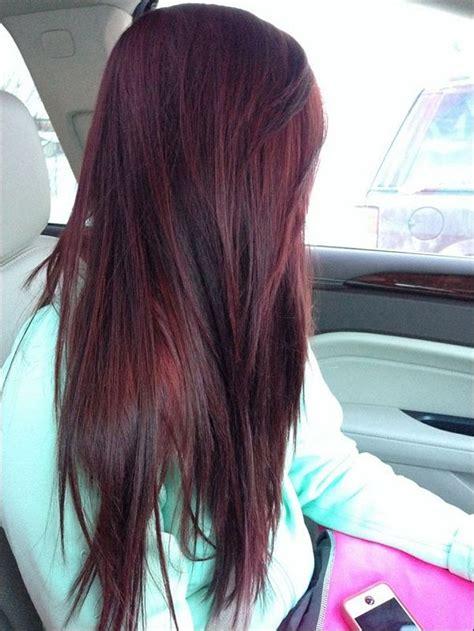 ideas  burgundy hair highlights  pinterest