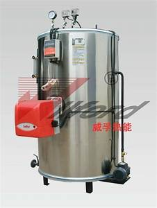 vertical steam boiler gas fired - LWS - WILFORD (China ...