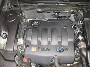 Moteur 2 0 Hdi : moteurs 2 0 hdi d branchement vanne egr tuto ~ Medecine-chirurgie-esthetiques.com Avis de Voitures