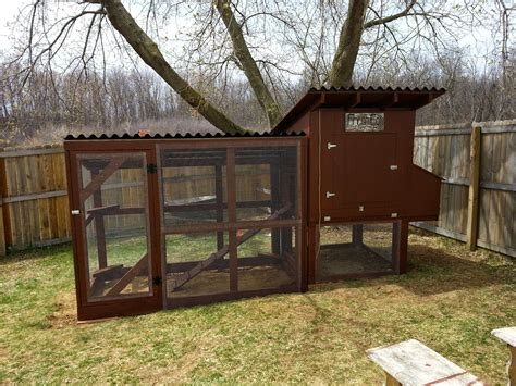 build  easy  clean backyard chicken coop