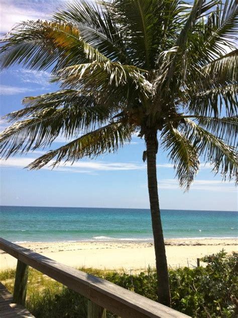 Rotelli S Boynton Fl by 25 Best Ideas About Boynton On Miami