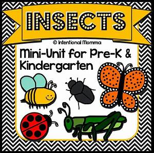 Insects And Bugs  Printable Mini