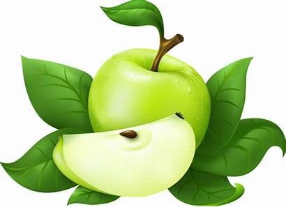 Apples Clipart Clip Clipartpanda Apple Panda Terms