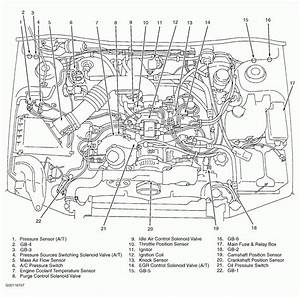 1999 Subaru Outback 2 5 Engine Diagram  U2022 Wiring Diagram