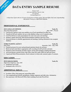 Pin example data entry resume free sample on pinterest for Data entry sample resume free