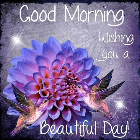 good morning wishing   beautiful day quote pictures