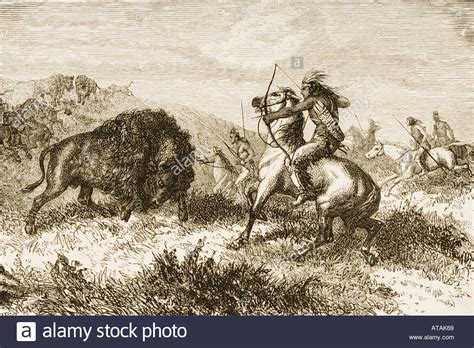 American Indians Buffalo Hunting From American Pictures