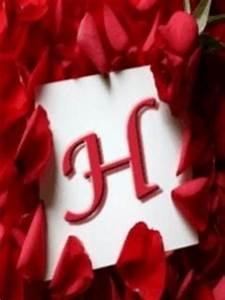 Download Alphabet H Wallpaper 240x320   Wallpoper #101857