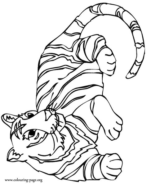coloring pages tiger coloring pages  printable