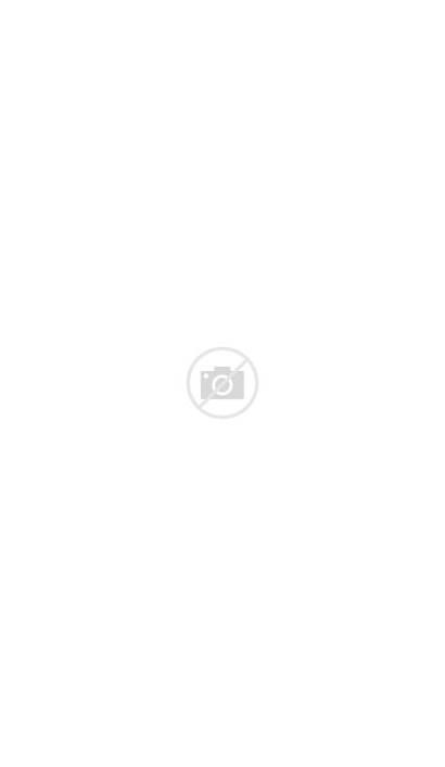 Zeong Perfect Gundam Msn